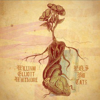 WILLIAM ELLIOTT WHITMORE P.O.S.